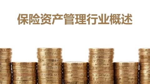 保险资产管理行业概述、政策解读及发展方向(境外投资解读)
